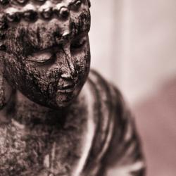 Praying Budah