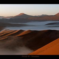 Dune 45 in the mist