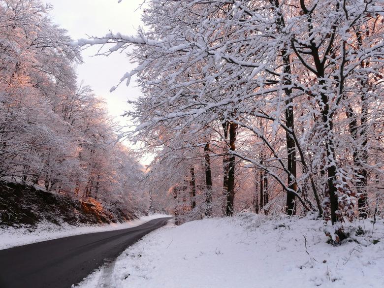 warme sneeuw
