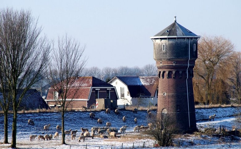 Watertoren Heinenoord. - Deze watertoren, gebouwd in 1910, is de kleinste watertoren van Nederland die in gebruik is geweest bij een waterleidingbedri
