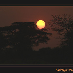Zonsopkomst in de Serengeti