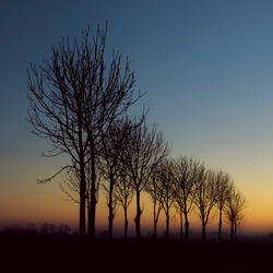 Sun rise in Winter