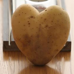 I love patato's