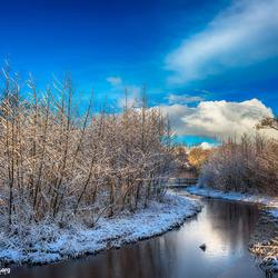 Winter in het Vijfhoekpark