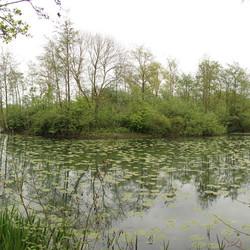 Panorama Kooikersplas