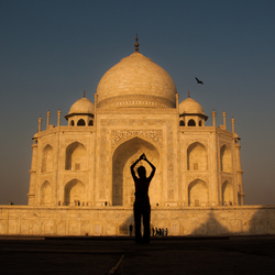 Lovely Taj