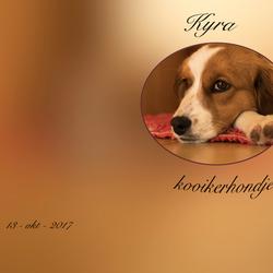 album kyra 0089
