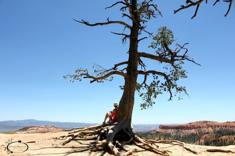 Watching the view - Amphitheater- Bryce Canyon, California<br />