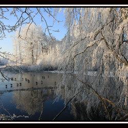 Wonderfull land