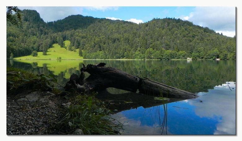 Alatsee - Deze zomer (augustus): Alatsee, een klein meertje inde buurt van Füssen, Zuid-Duitsland, Allgäu. Mooie fietsroute er naartoe! Kon er alleen