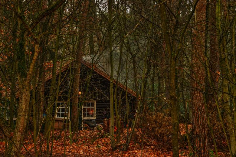 Hans en grietje._01 - Foto genomen met de 70-300mm lens,sluiterijd 1/15 en uit het handje(er was gelukkig een boom aanwezig om tegen te leunen)Nu blij