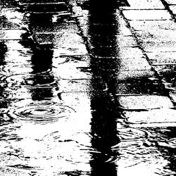van de regen in  de drup