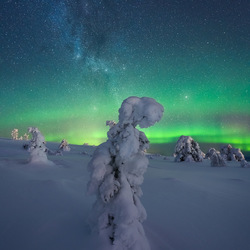 Dreamscapes from Lapland