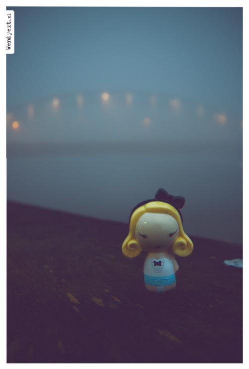 Mist(iek) - Zie ook: http://zoom.nl/foto/1083860/bewerkte-fotografie/in/user-15035/reflect.html