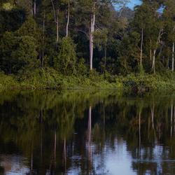 Reflektie in Suriname