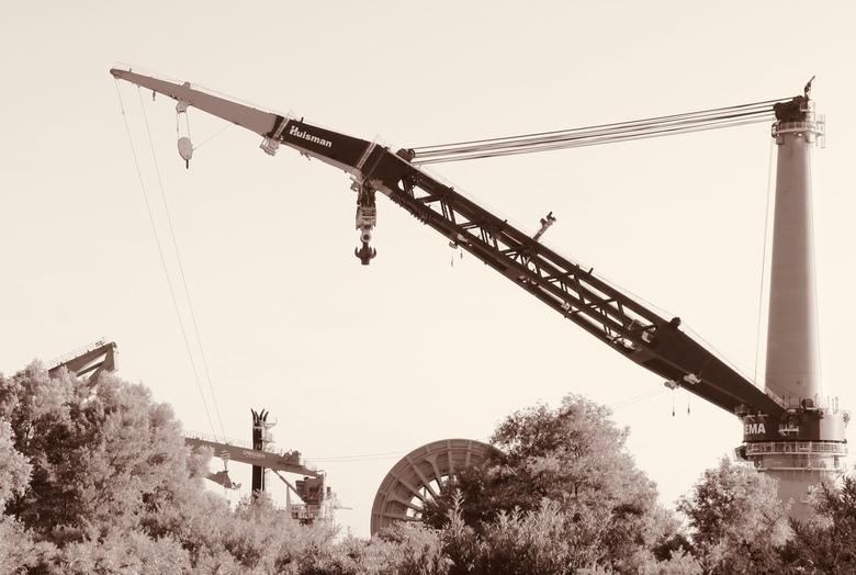 drijvende kraan bij Rozenburg -