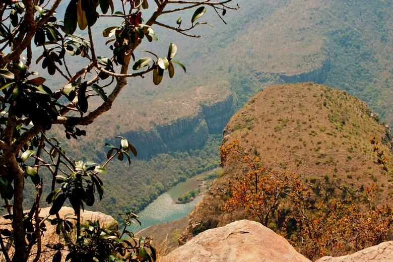 Mpumalanga - Ochtendnevel in Mpumalanga, Zuid-Afrika