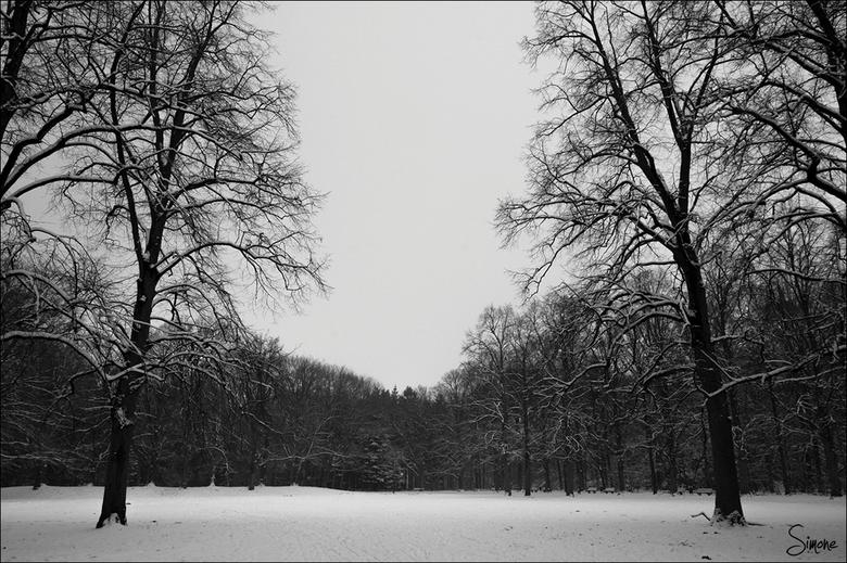 Snow in the dark - Zonder enig daglicht is deze foto gemaakt.