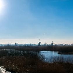 Panorama Kinderdijk II