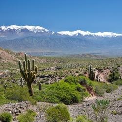 Cachi Pampa Salta Argentinië