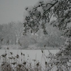 winter in Drachten