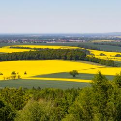 Panorama Rochlitzer Berg