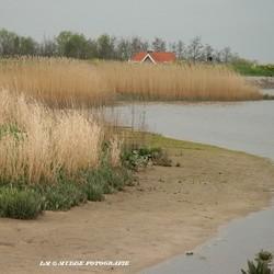 Langs de Hollandse IJssel
