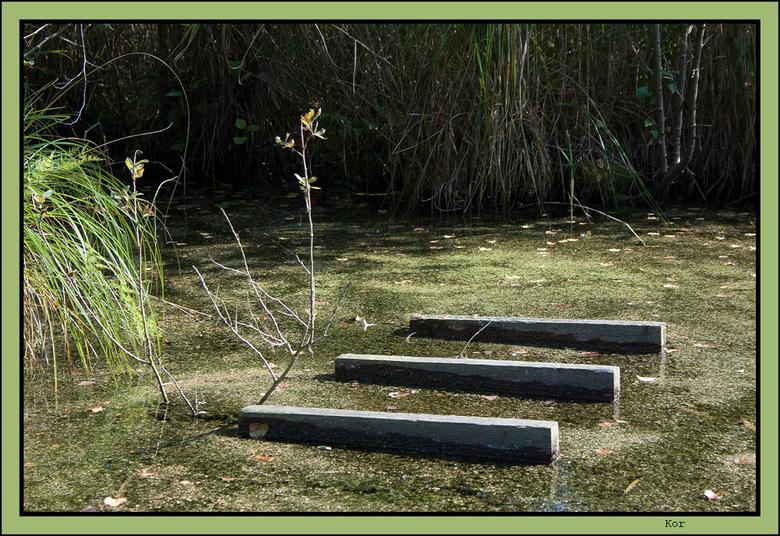 Simpel - Heel simpel. 3 balkjes in een sloot nabij de Weerribben.