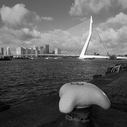 Erasmusbrug, Rotterdam.JPG