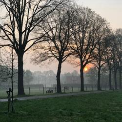 Prachtige ochtend