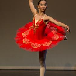 Ballerina's dream