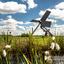 Tjasker in het Hollandse polderlandschap
