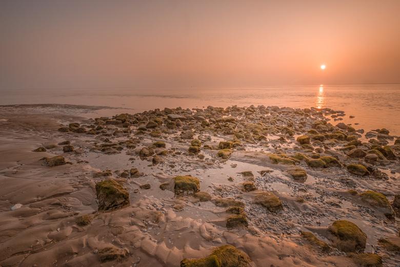 Texel Dawn - Texel Dawn