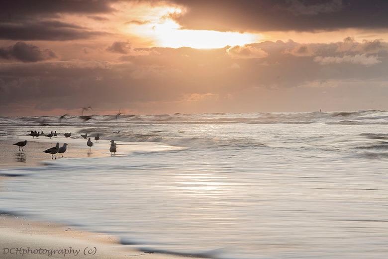 Sunset on the beach - Als je de andere kant opkijkt zie je de zon ondergaan, fraai gezicht.<br /> <br /> Iedereen bedankt voor de positieve en fijne