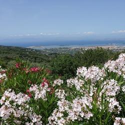 Lefkasstad, Griekenland