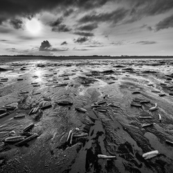Low tide on Sunday