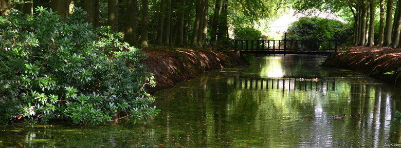 Wezep Ijsselvliedt - Even na toe gelopen na het mooie landschap Ijsselvliedt in Wezep wat mooie plaatjes gemaakt!