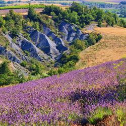 Kleuren in de Drôme
