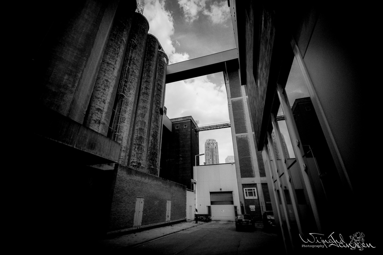 Dangerous back alley