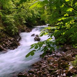 Vintgar Ravijn Slowenie