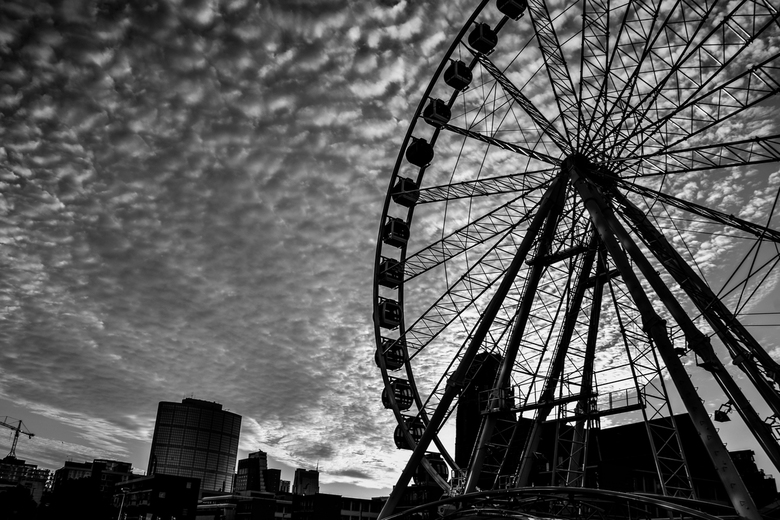 Ferris Wheel - Rotterdam beauty