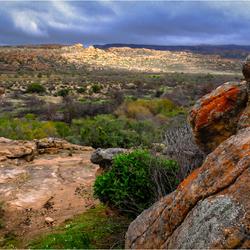 Cederbergen - Namibia