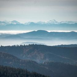Uitzicht richting Alpen - Feldberg, Schwarzwald