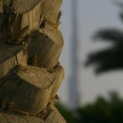 Burj Dubai anders...