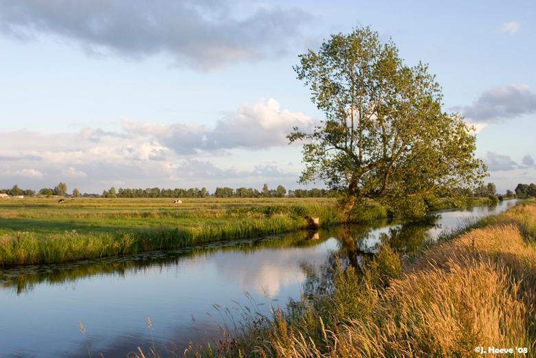 landschap - in de buurt van Rouveen.
