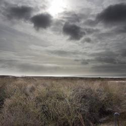 """Drama duinen bij """"Aan Zee"""" - Oostvoorne"""
