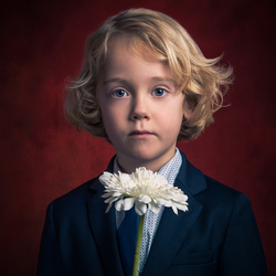 The Flowerboy