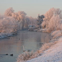Winter in Zuid Oost-Brabant
