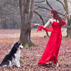 dancing with the wolfs