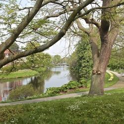 Hortus Botanicus te Leiden